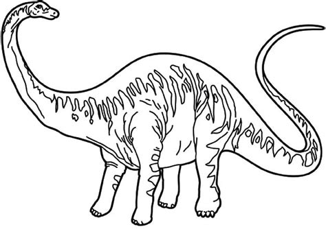 free coloring pages of diplodocus