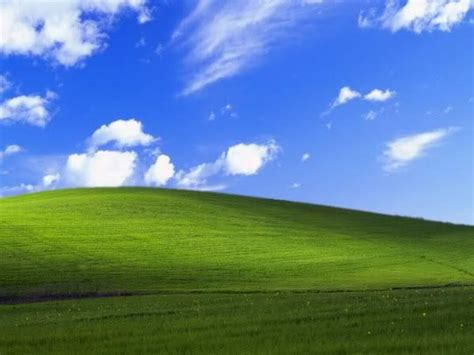 image  windows xp bliss wallpaper   meme