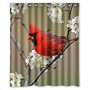 classic cardinal bird design birds