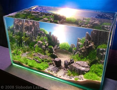 cool aquascapes awesome aquariums aquarium tanks aquascape fish tanks