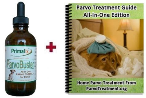 parvo symptoms including diarrhea in dogs