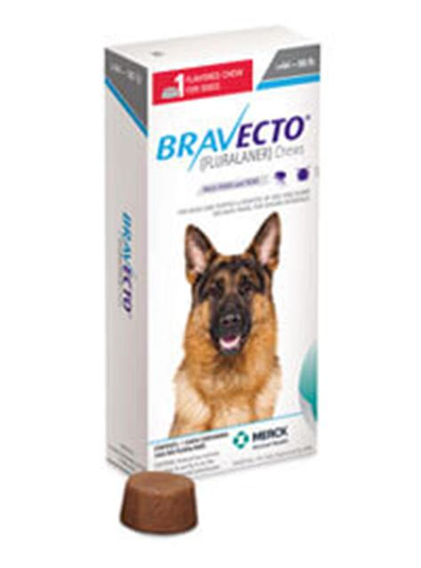 Bravecto Flea Medicine For Cats - bravecto 174 fluralaner the only 12 week flea tick