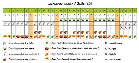 Calendrier Lunaire Nord De La Jardiner Avec La Lune Au Potager En Juillet
