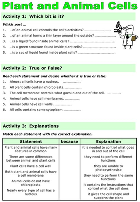 cells worksheet ks3 ks3 revision animal plant specialised cells by seasquirt teaching resources tes