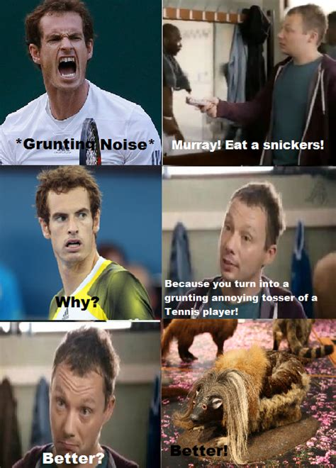 Andy Murray Meme - andy murray meme by rebekah1xox on deviantart