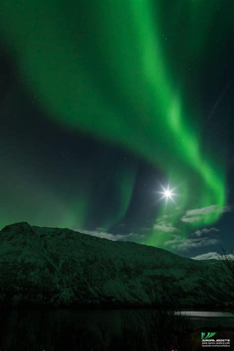 northern lights tromso september 71 best images about northern lights in tromso on