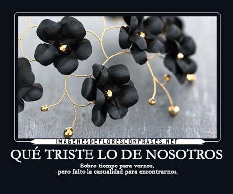 rosas negras con frases tristes para dedicar imgenes que compartir im 225 genes de flores negras con frases de dolor y olvido