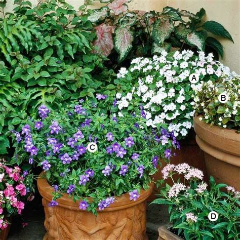 1407594745 one pot a collection of 730 best images about flower pots and containers on pinterest