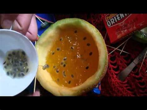 como hacer una celula con dulces c 233 lula animal comestible youtube