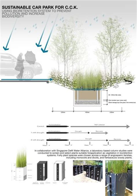rain garden cross section cross section of bioretention graphics renderings