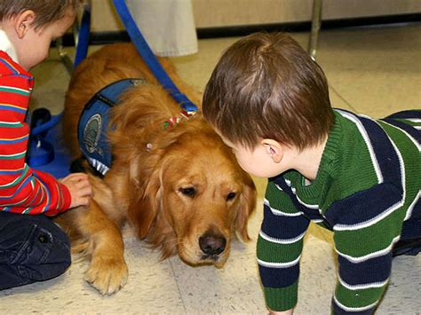 Connecticut Shooting Comfort Dogs Help Grieving Families