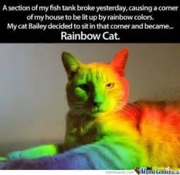 Rainbow Cat Meme - rainbow cat by rubenxx meme center