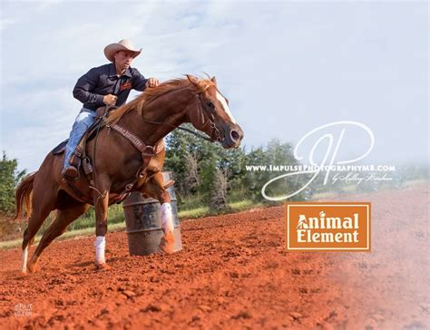 Animal Element Detox Loading Dose by Barrel Racing 1st Barrel Sorrel Running With