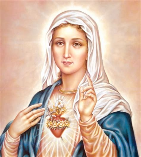 mary mary patron immaculate heart of mary