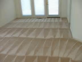 Non Toxic Area Rug Rialto Carpet Cleaning