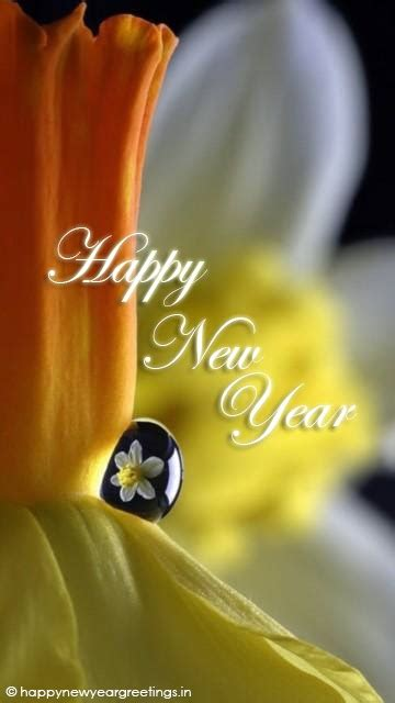 cool new year mobile wallpapers greetings smurfy happy new year 2014 wallpaper quotes for mobile