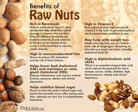 the best nuts the top 10 nuts for hormones and weight loss