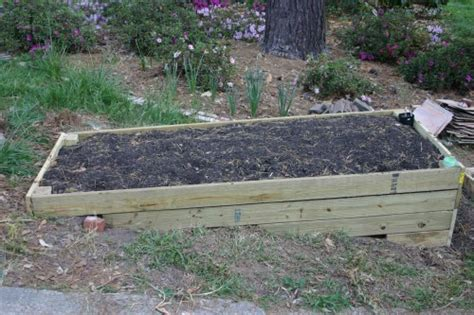 Is Pressure Treated Lumber Ok For Vegetable Gardens Treated Pine Vegetable Garden