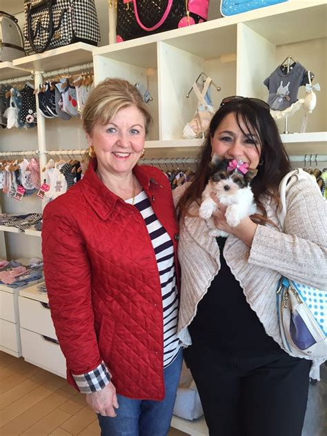 woof woof puppies and boutique woof woof puppies boutique 101 photos pet stores 29555 northwestern hwy