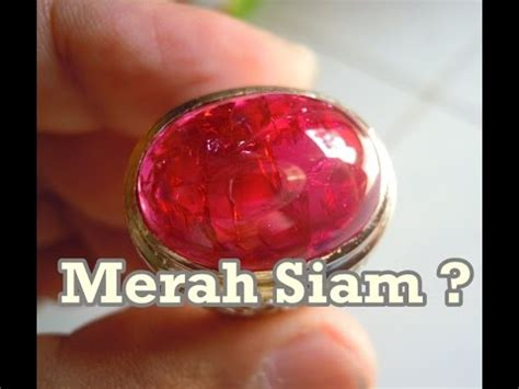Batu Merah Siem Merah Siam pengambilan bongkahan batu merah siem di hutan doovi