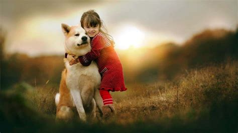 wallpaper girl dog animal human friendship images wallpapers lovesove com