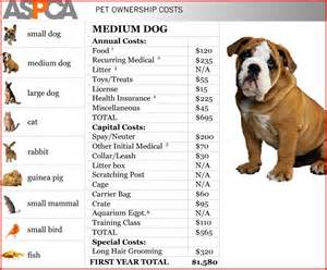 how much do cost for dogs how much does a chinook cost breeds picture