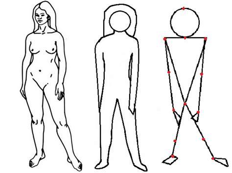 imagenes de representaciones realistas representaci 243 n gr 225 fica de los ejercicios anatom 237 a