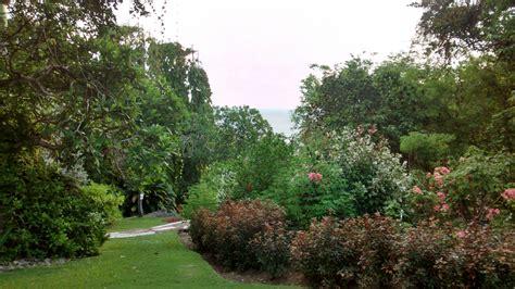 Andromeda Botanical Gardens Andromeda Botanic Gardens Barbados Volunteer