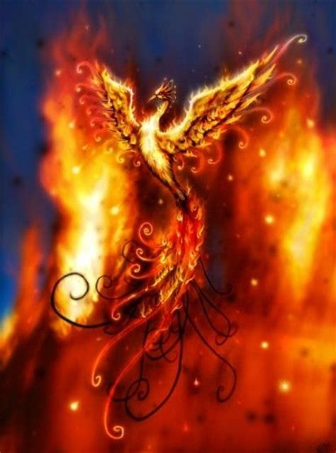 phoenix rising from the ashes tattoo rising from the ashes my ultimate this