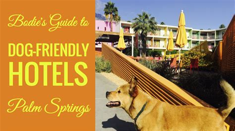 friendly hotels palm springs bodie s guide to friendly hotels in palm springs bodie on the road