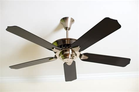 ceiling fan light assembly ceiling fan assembly lighting and ceiling fans