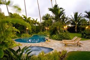 tropical backyard design des plantes originales pour le jardin zen archzine fr