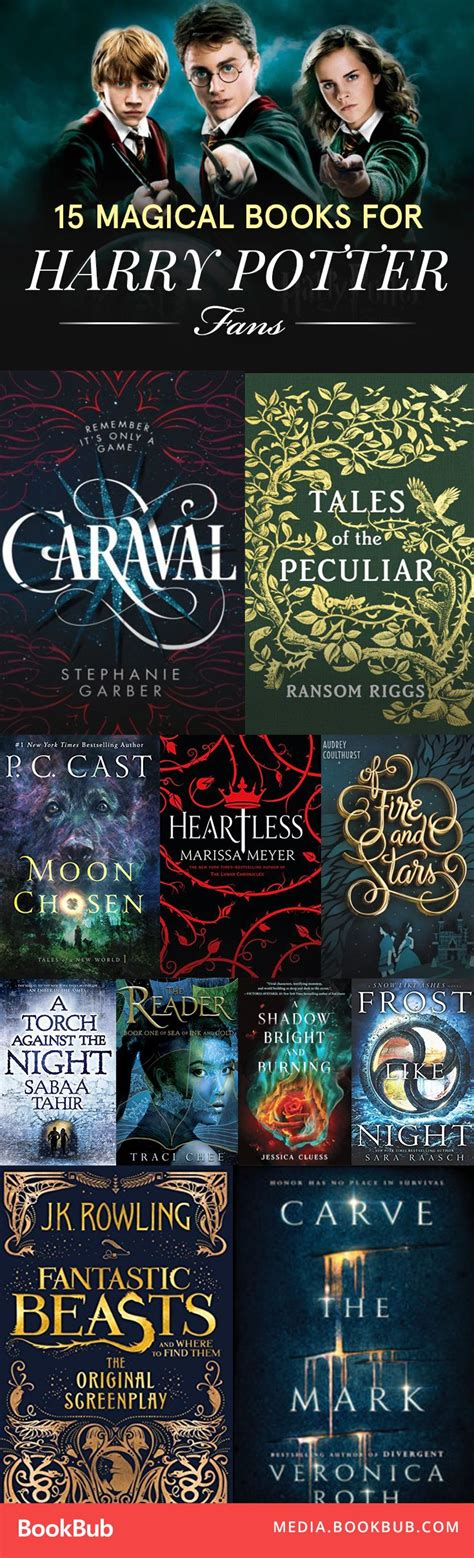 books for harry potter fans 15 books harry potter fans are reading this winter