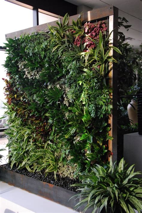 interior plant wall 600 best images about vertical gardens on