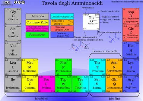 proteine e aminoacidi tavola periodica amminoacidi novit 224 2012