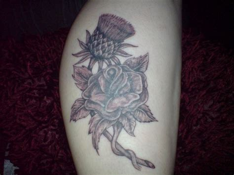 rose and thistle tattoo designs 30 best designs images on lavender