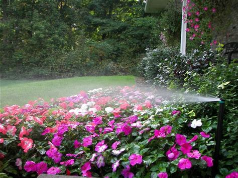 flower bed watering system what we do