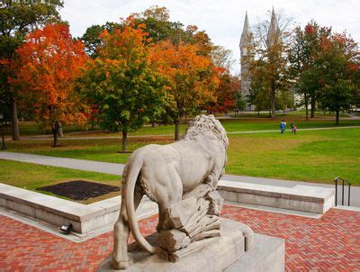 Bowdoin College Acceptance Letters the common application definition tips and more