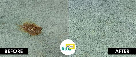 remove grease stains  carpet fab