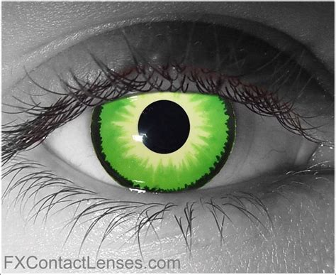 Bright Green Contacts - bright green contacts www pixshark images