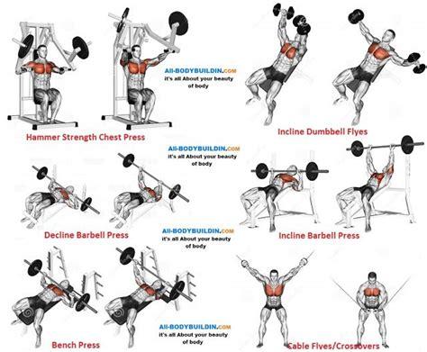 chest program f workout chart programming and mass