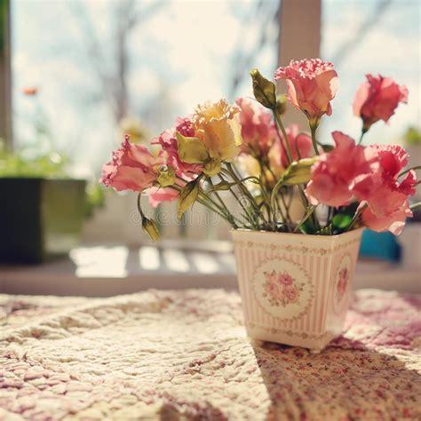 fiori da davanzale fiori sul davanzale fotografia stock immagine di bello