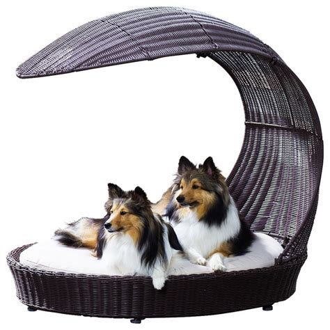Contemporary Accessories For Your Pet by Outdoor Chaise Lounger Contemporary Beds By
