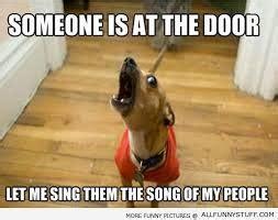 Barking Dog Meme - funny chihuahua dog memes