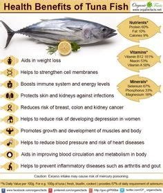 Health Benefits Of Fish by The World S Catalog Of Ideas