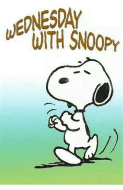 Snoopy Meme - funny snoopy memes of 2016 on sizzle memes