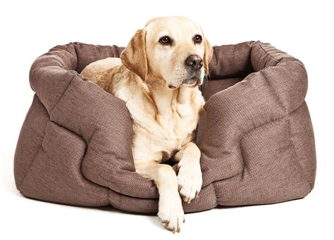 best pet beds best dog beds for labradors labrador dog beds