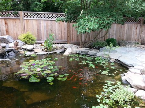patio koi pond water features and koi ponds sycamore landscaping inc