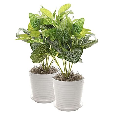 Decorative Ceramic Planters by New Set Of 2 White Ceramic Ribbed Plant Pots Small