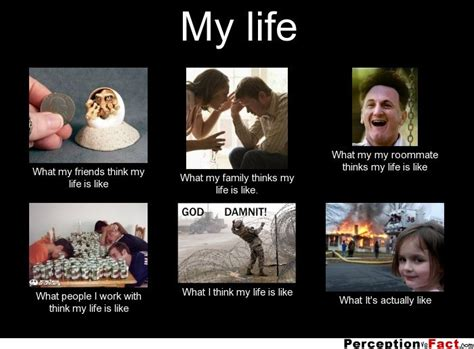 Sex Life Meme - my life what people think i do what i really do